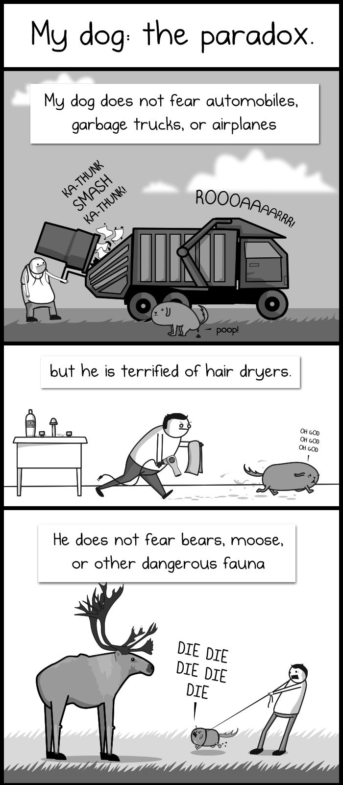 Dog Paradox 1