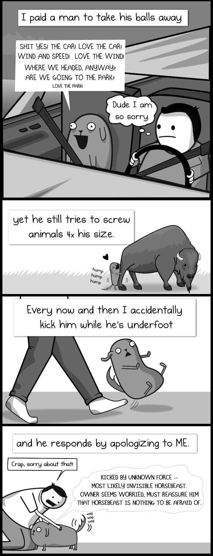 Dog Paradox 3